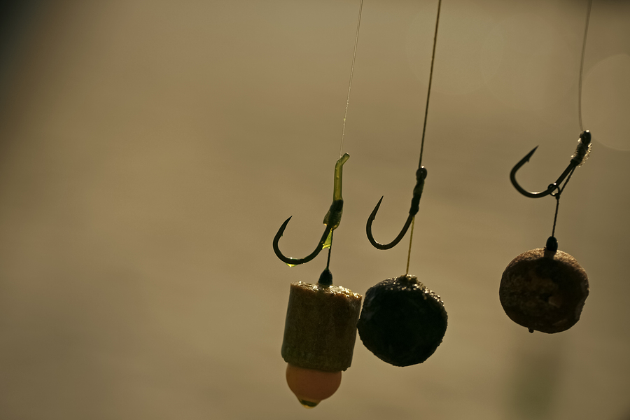 Baits, Hooks, Sinkers Preparing For Carp Fishing.