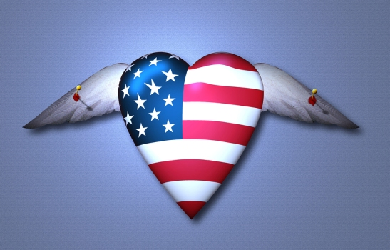 Symbolic composition. Trapped USA Winged Heart. Pinned Freedom.